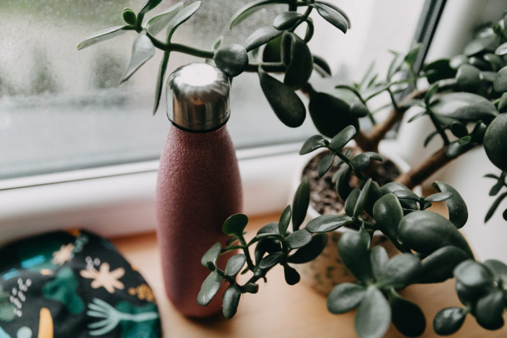 butelka termiczna BOTAP na homeoffice jak pić wodę